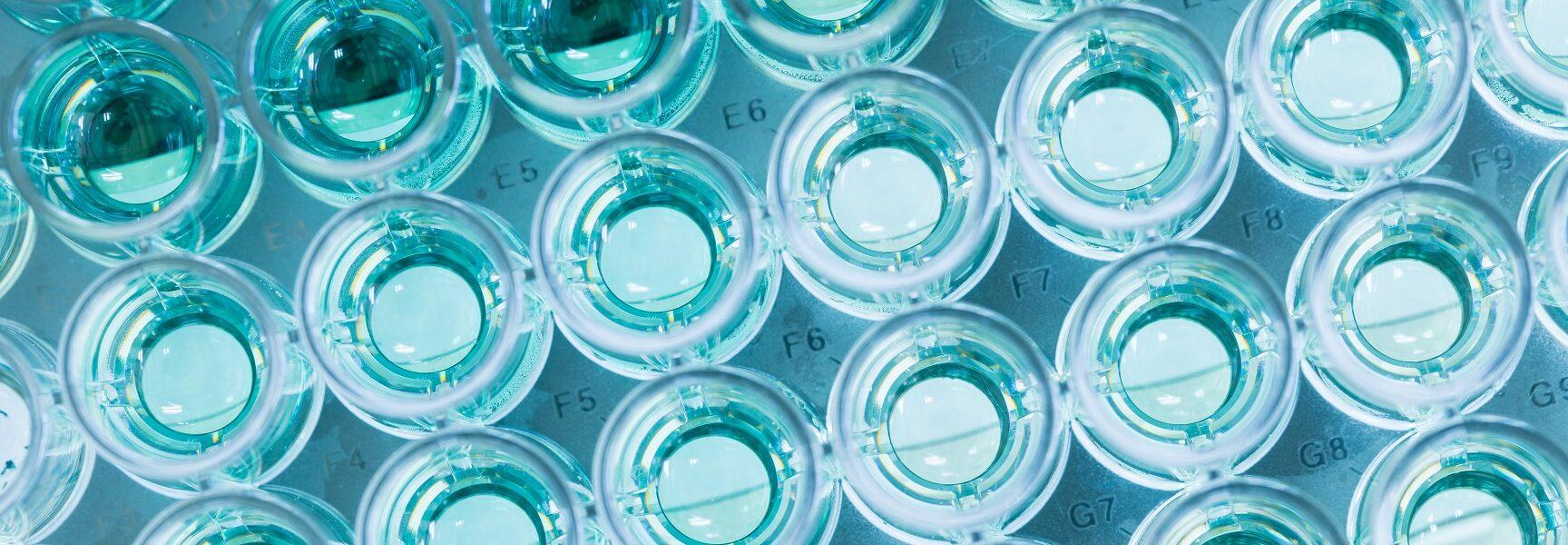 Luminescent bacteria test_ISO 11348-3